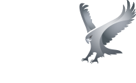 eagles flight logo