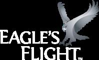 eagles flight logo